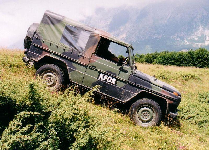 800px-MB250GD_Wolf-Quelle-wikipediaZrl9Zd0lH0Aeu